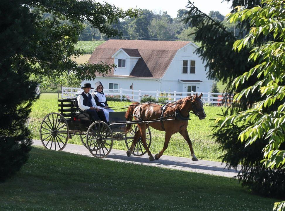 Co wiesz o Amiszach? quiz