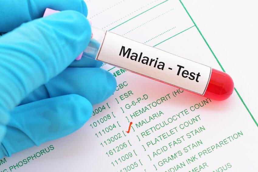 Malaria-Test-Röhrchen in von Handschuh geschützten Händen.