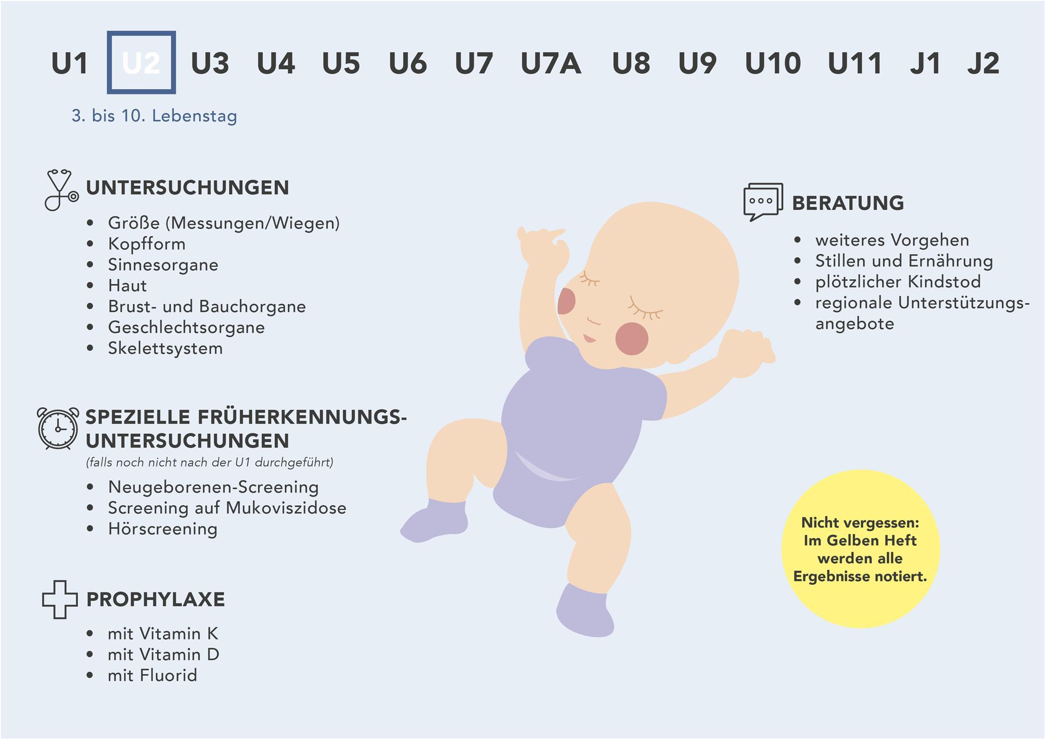 Die U2 auf einen Blick