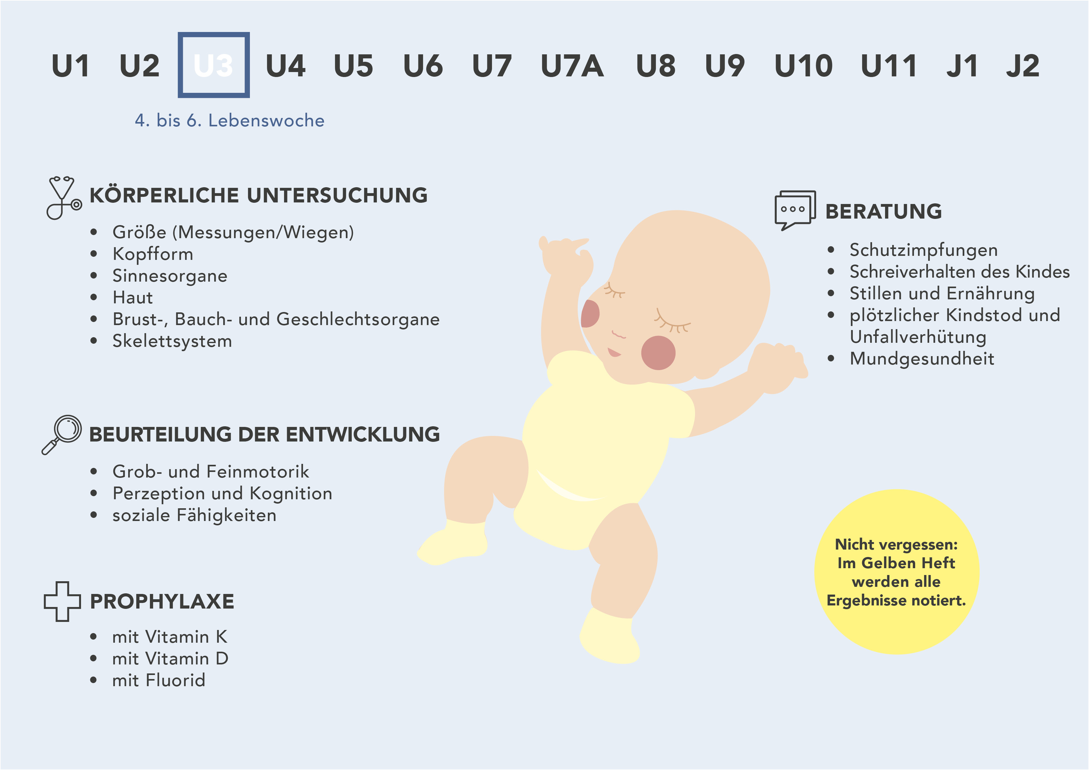 Die U3 auf einen Blick