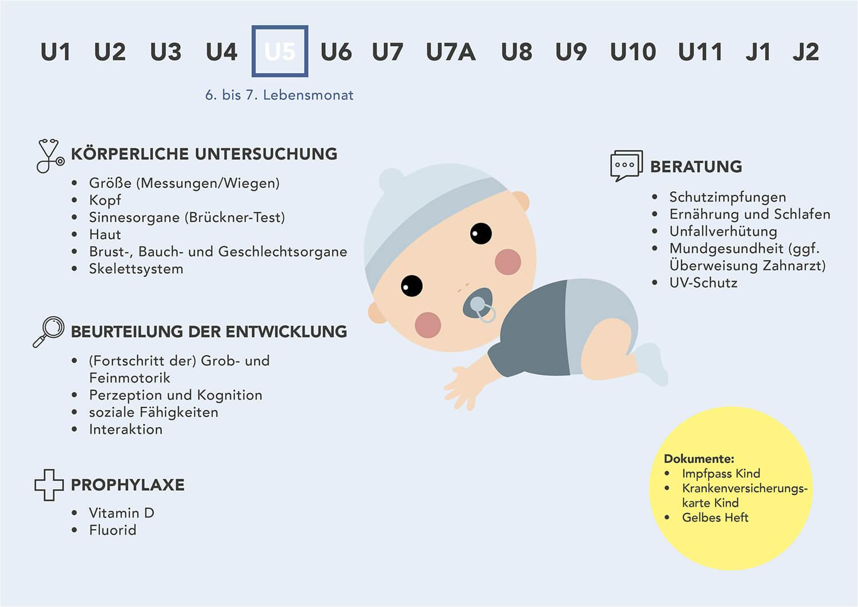 Fakten zur U5-Untersuchung fürs Baby - Grafische Darstellung