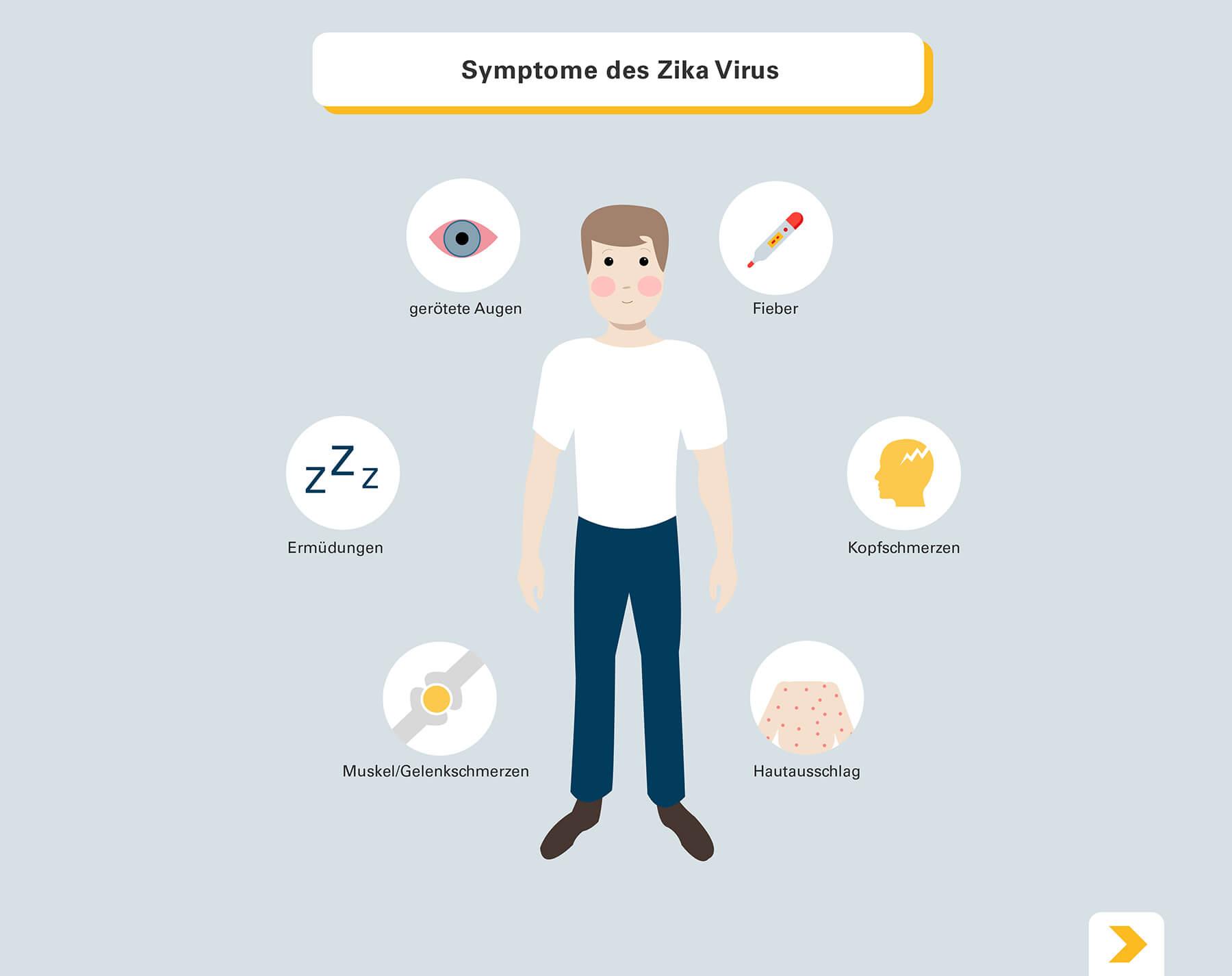 Zika-Virus-Symptome - Grafische Darstellung