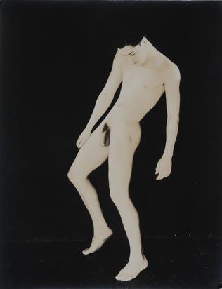 Lynes George Platt, Henri Wessels