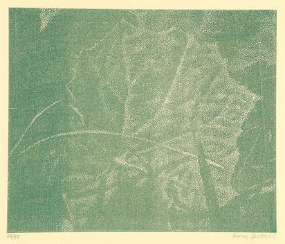Gertsch Franz, Book. Franz Gertsch Holzschnitte, Die Kunst liegt in der Natur, Wer sie herausreissen kann, der hat sie