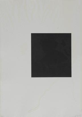 Trockel Rosemarie, Portfolio. White Carrot