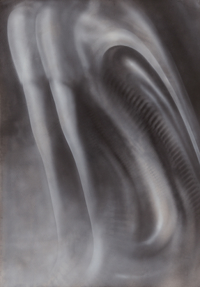 Giger H.R., Untitled