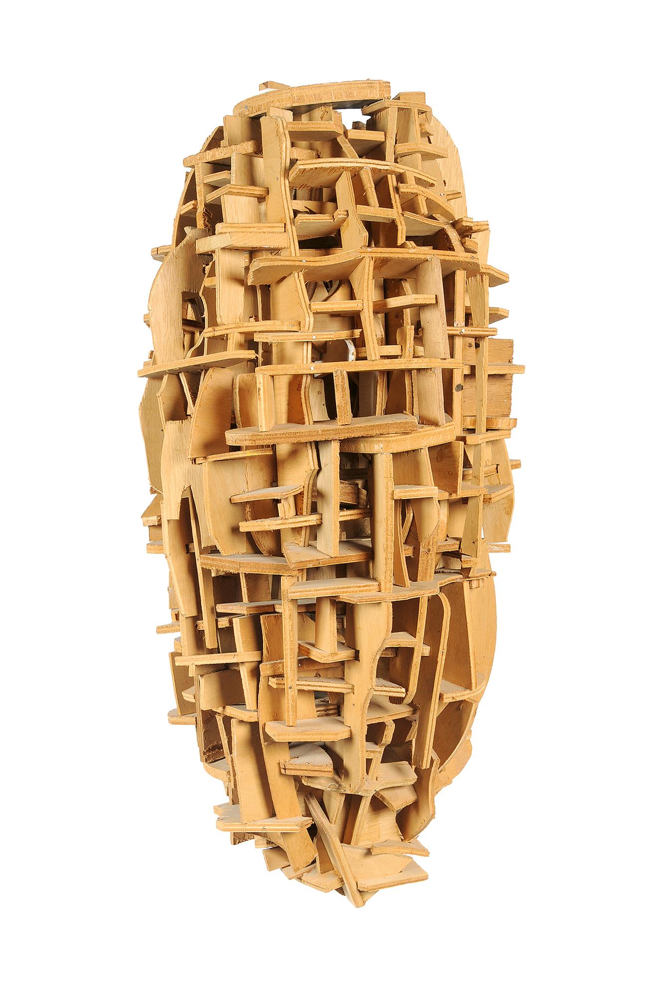 Suter Hugo, Holzkörper
