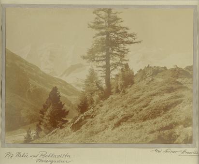 Steiner Albert, Piz Palü und Bellavista, Oberengadin