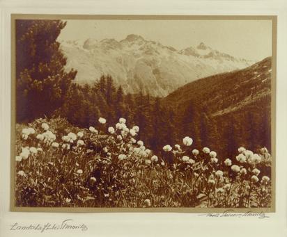 Steiner Albert, Landschaft bei St. Moritz
