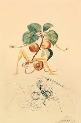 "Dalí Salvador, Abricot chevalier, from ""Flordali (Les Fruits)"""