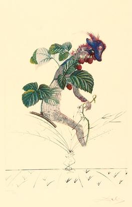 "Dalí Salvador, Framboisier, from ""Flordali (Les Fruits)"""