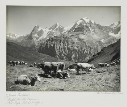Steiner Albert, 2 photographs: Berner Oberländerhaus bei Spiezwiler; Berner Oberland
