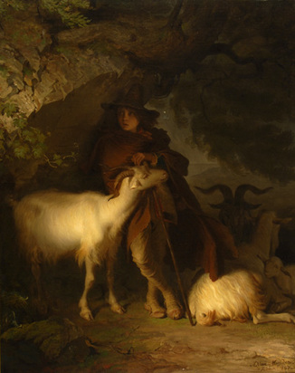 Muyden Alfred van, Berger italien et son troupeau de moutons
