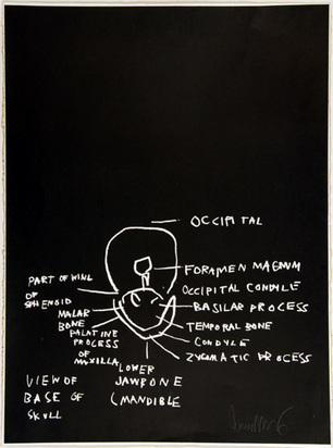 "Basquiat Jean-Michel, View of Base of Skull, aus ""Anatomy"", 1982"