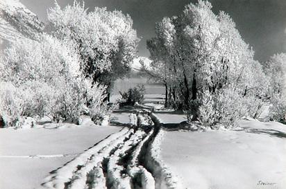 Steiner Albert, Wintermorgen bei St. Moritz