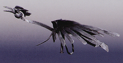 Mattioli Silvio, Bird, 1992