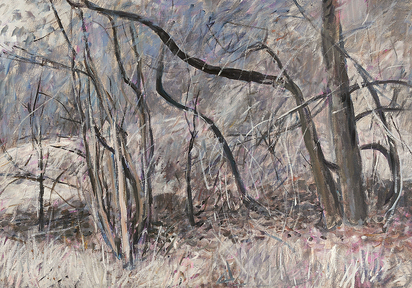 Moser Wilfrid, Unterholz im Herbst