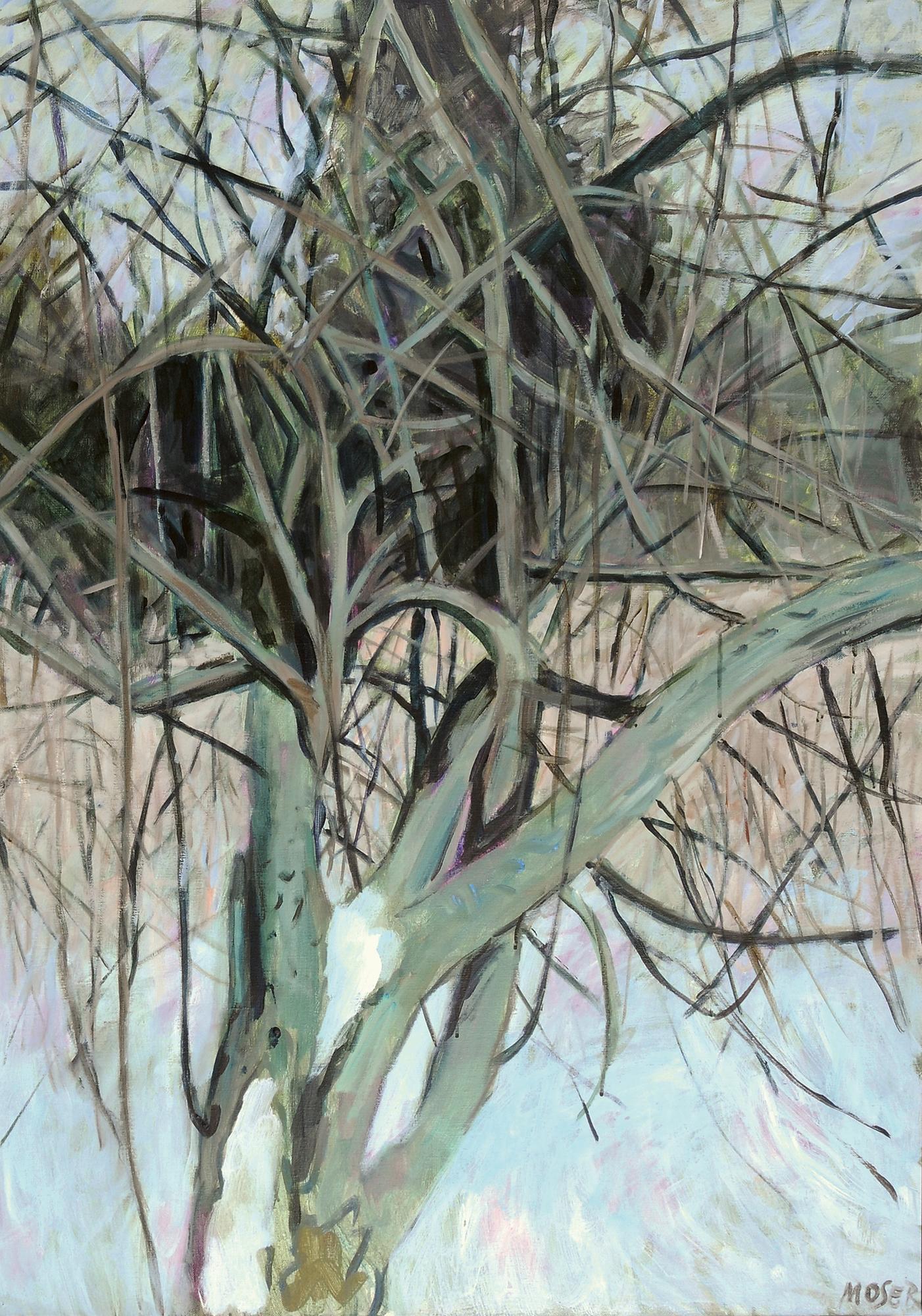 Moser Wilfrid, Baum im Schnee