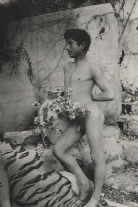 Plüschow Guglielmo, 2 Fotografien: Sizilianischen Knaben