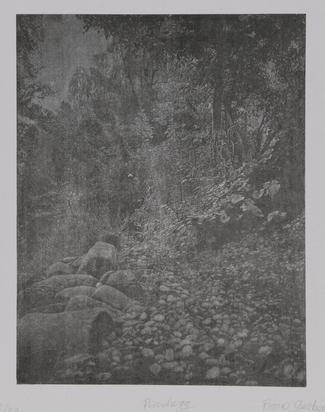 Gertsch Franz, Portfolio. 5 Bilder