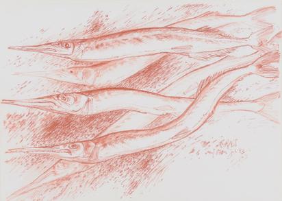 Grass Günter, Fish