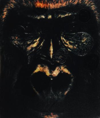 Hofmann Hanspeter, Untitled
