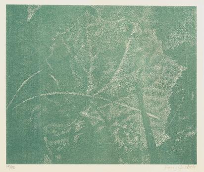 Gertsch Franz, Book. Franz Gertsch, Holzschnitte. Die Kunst liegt in der Natur. Wer sie herausreissen kann, der hat sie