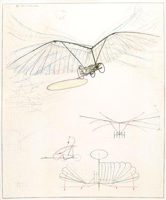 Panamarenko, Flapping Wing Aircraft