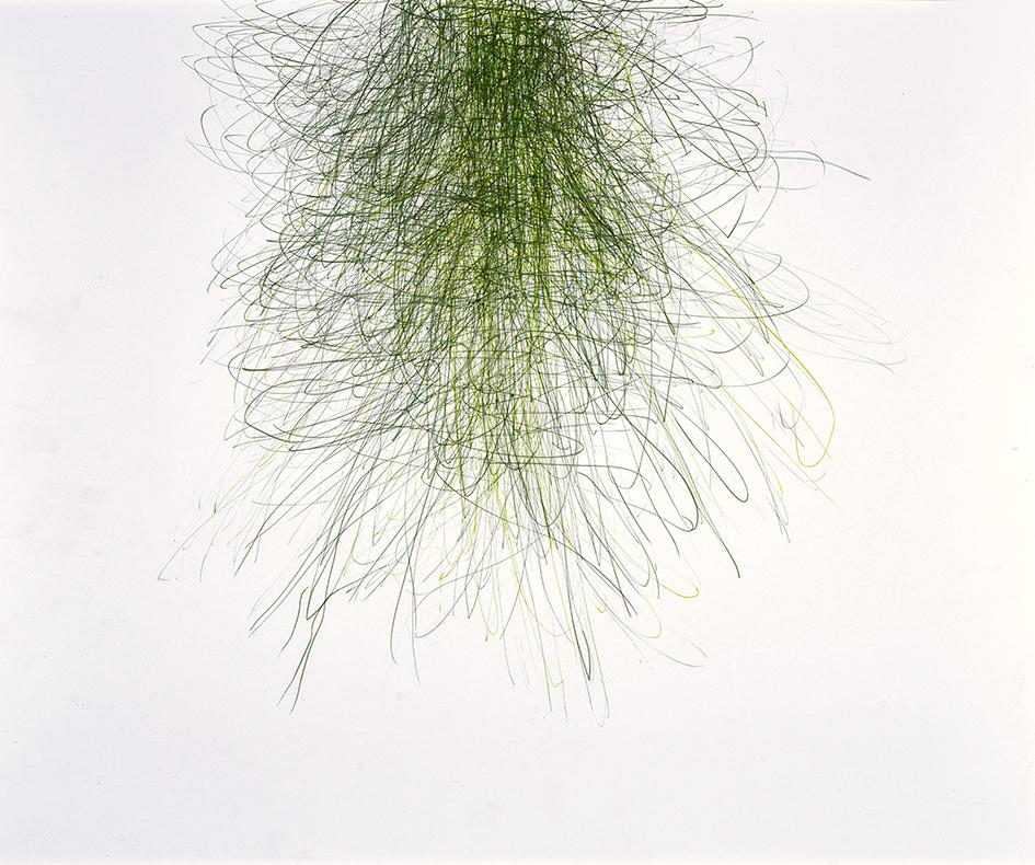 """Hauser Susanne, Untitled, from """"Das Gras wachsen hören"""""""