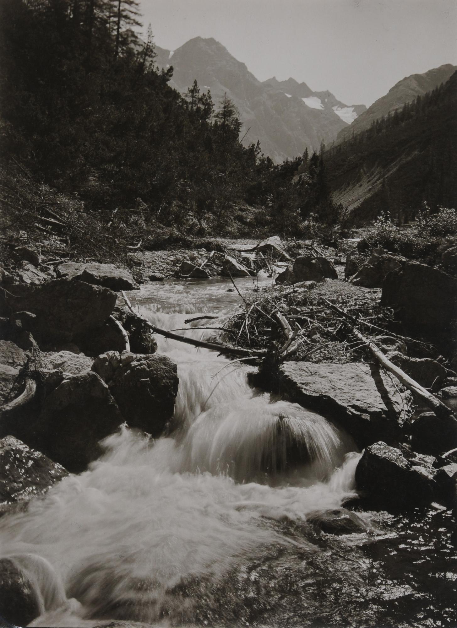 Steiner Albert, Schweiz Nationalpark, Val Cluozza
