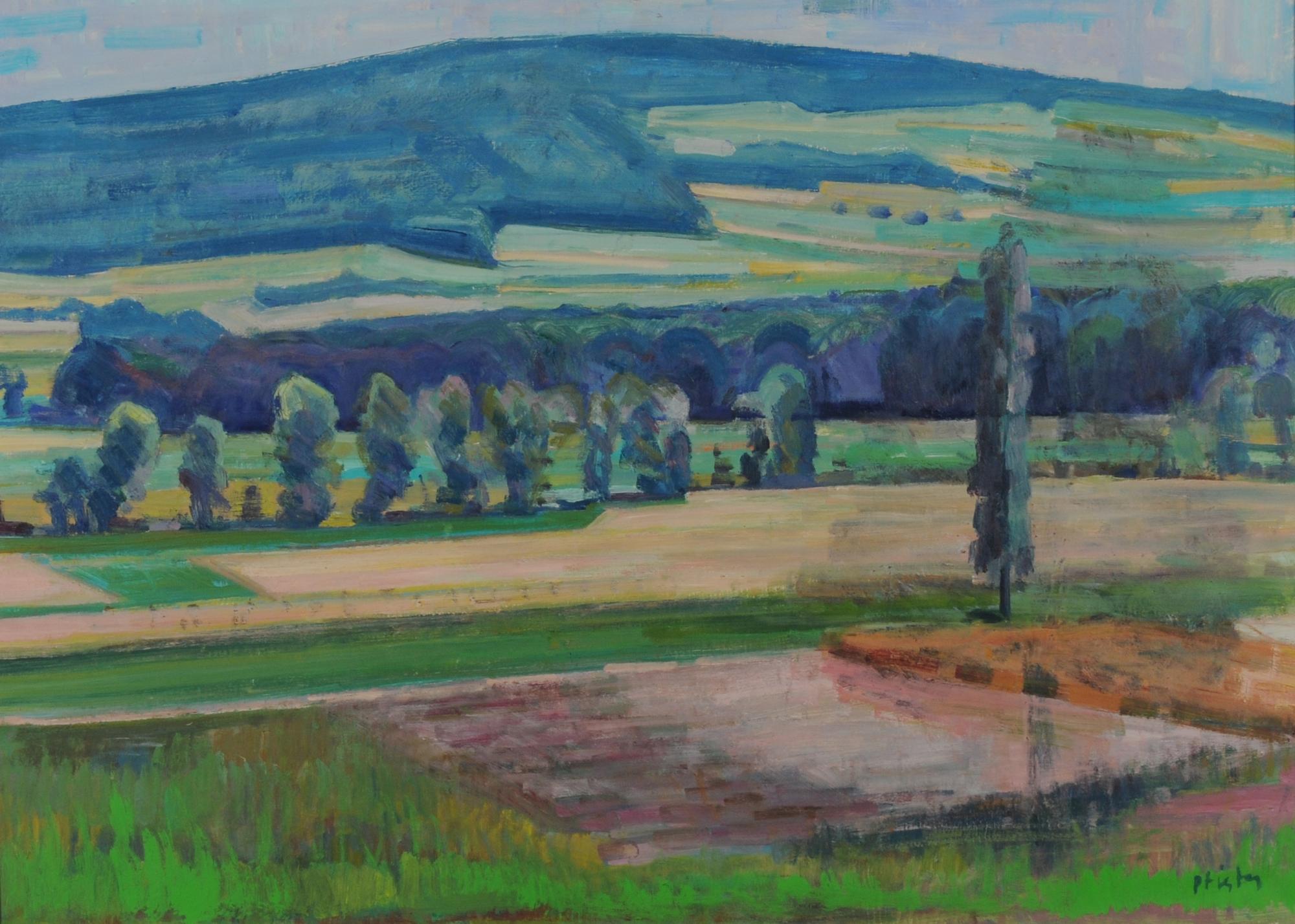 Pfister Albert, Landscape at Pfannenstiel