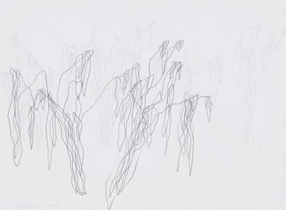 2 drawings: Banyan Tree, 2006; Pipal Tree