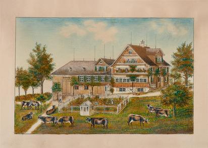 Weidende Kühe vor Toggenburgerhaus