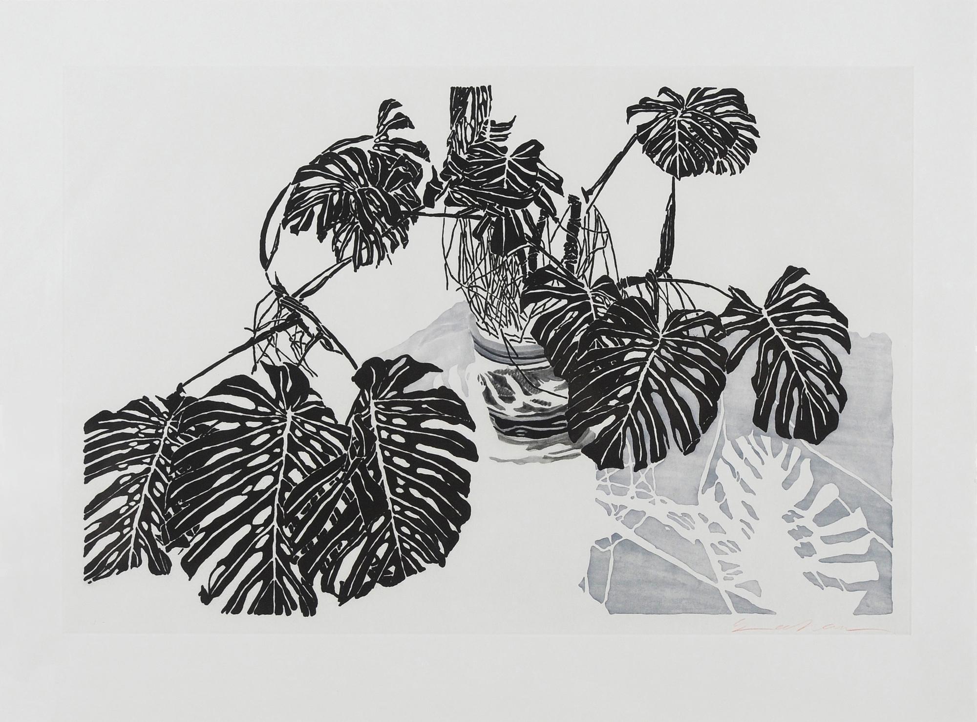 Szafran Sam, Philodendrons (gris bleu et ombre bleutée)