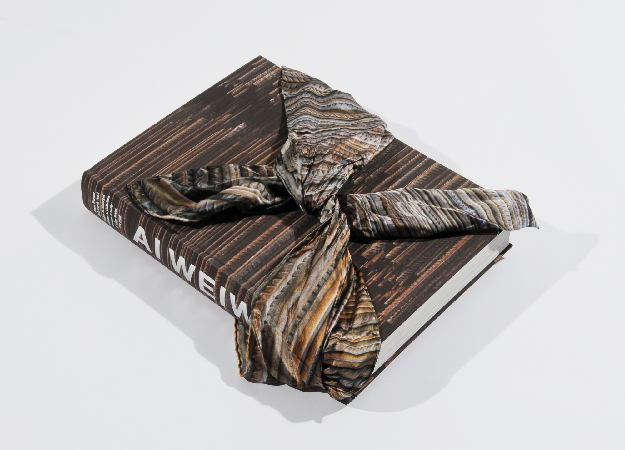 Weiwei Ai, Book. Hans Werner Holzwarth. Ai Weiwei, Monograph