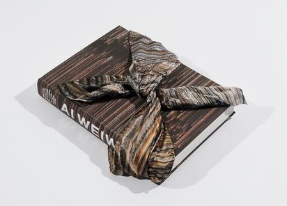 Book. Hans Werner Holzwarth. Ai Weiwei, Monograph