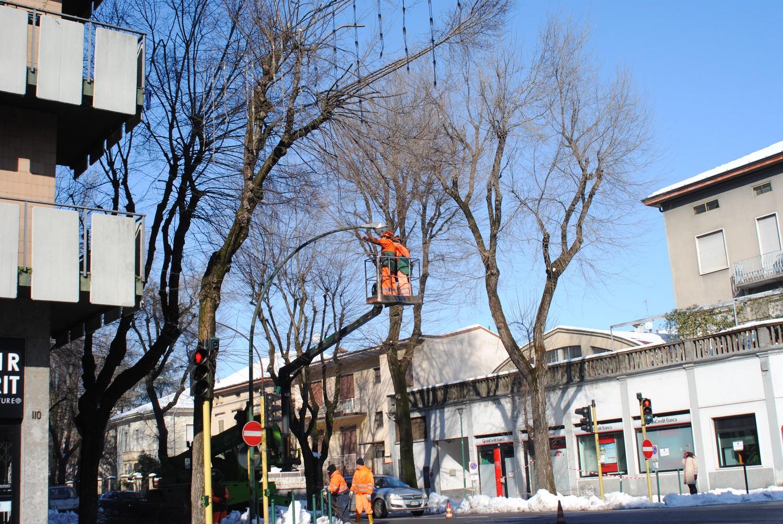 Neve, mille tonnellate di rami e alberi: raccolta ancora in corso