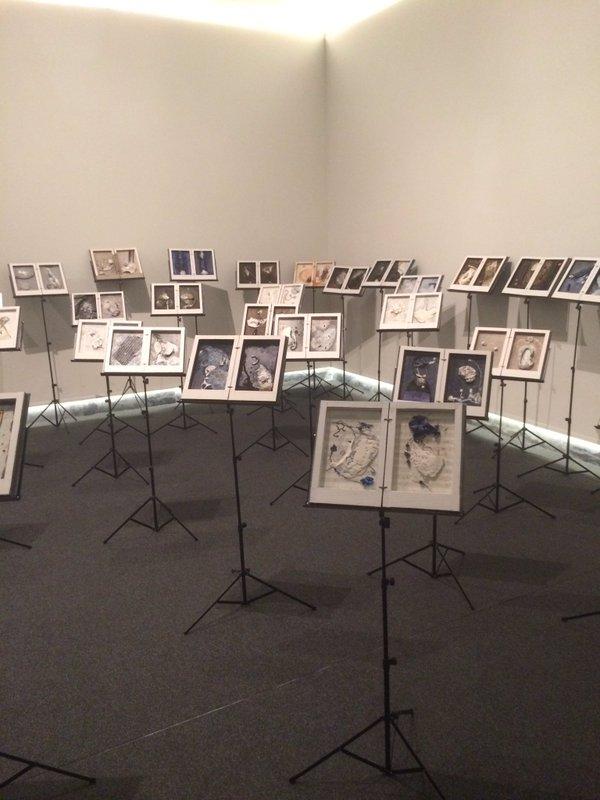 Conclusa la mostra 'Concerto per Sofonisba': esperienza intensa e di fascino che ci ha aperto all'arte contemporanea