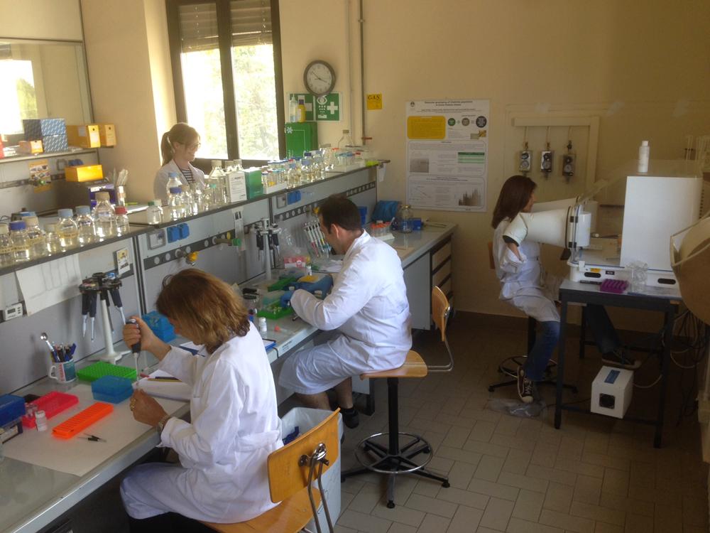 Via a 'Cremona Food Lab', il polo di ricerca e servizi per le imprese agroalimentari