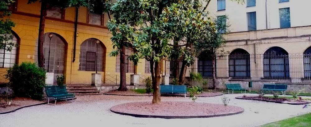 Ex Museo Stradivariano