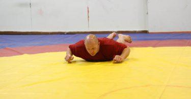 Fedor Emelianenko si allena...(foto) 43
