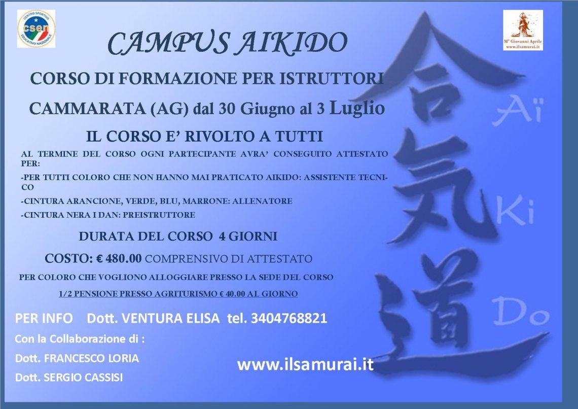 Corso per istruttore Aikido 1