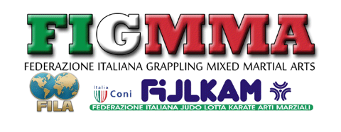 logo FIGMMA
