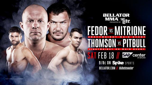 Risultati e highlights Bellator 172: Fedor vs Mitrione (update) 1