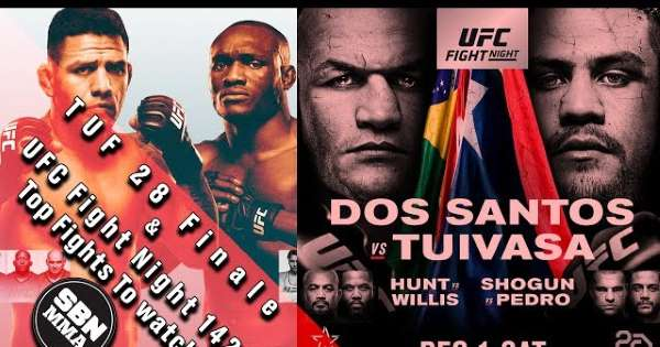 THE ULTIMATE FIGHTER 28 FINALE + UFC FIGHT NIGHT: DOS SANTOS VS TUIVASA 1