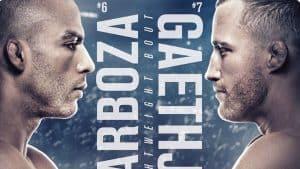 UFC on ESPN: Barboza vs. Gaethje 2