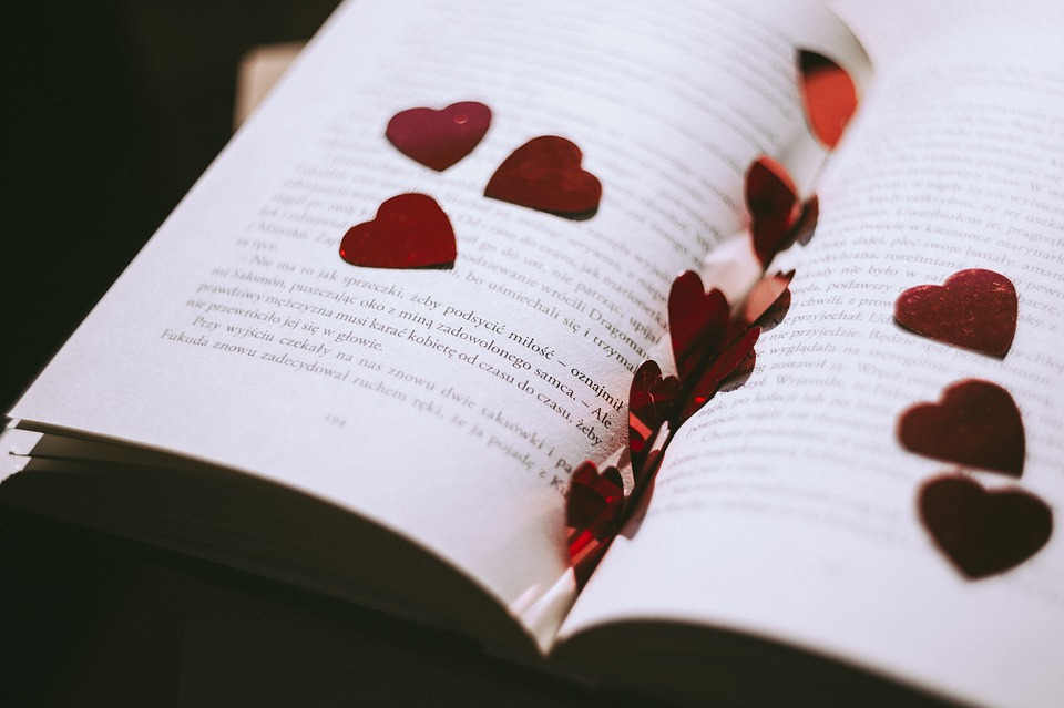 book-2589044_960_720