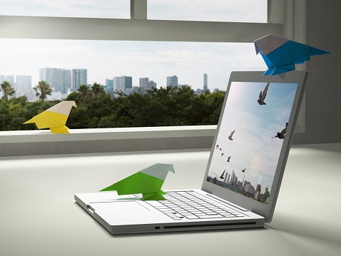 Paper bird is tweeting with a laptop PC