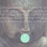 Ashtanga Yoga, het achtvoudige pad!