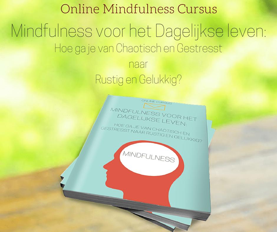 Online Mindfulness Cursus-